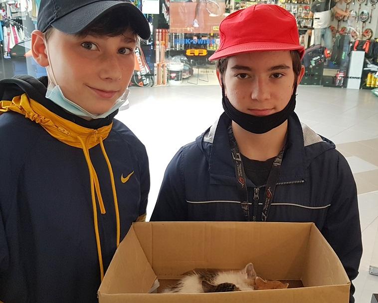 Záchrana koťat na Staré Osadě